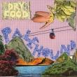 palehound, dry, food, album review, indie, garage