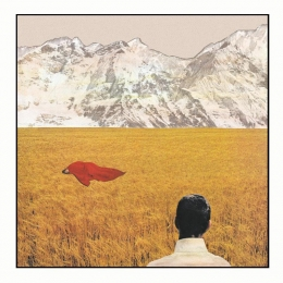 Lady Lamb The Bee Keeper, After, album review, indie