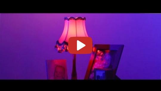 Leaf House - Shiny People