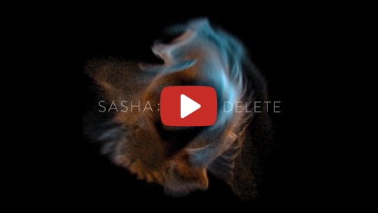 Sasha - View2