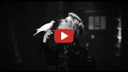 Warhaus - The Good Lie (Official Video)