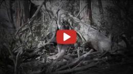 Ballerina Black - Gravity (Official Music Video)
